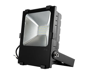 led floodlight fl nlf100wd2